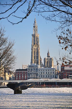 Winter of 2009–10 in Europe - Image: Antwerp, belgium January 3