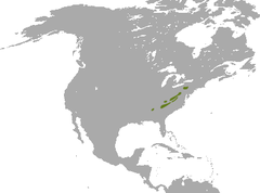 Appalachian Cottontail range.png