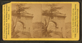 Arch at Fairmount, from Robert N. Dennis collection of stereoscopic views.png