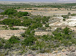 Ash Meadows Point of Rocks Springs 5.jpg