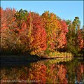 Autumn Marsh Pond (15538491901).jpg