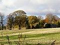 Autumn at Shandwick - geograph.org.uk - 1044874.jpg
