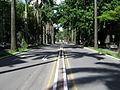 Avenida brasil.JPG