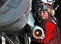 Aviation Ordnanceman.jpg