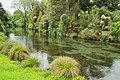 Avon River in Christchurch Botanic Gardens.jpg