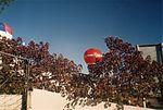 BALONISMO EM TORRES - panoramio - rafael alexandre de … (7).jpg