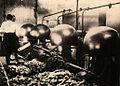 BASA-2072K-1-321-11-Rose oil factory, Bulgaria.JPG