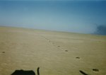 B Company, 1st Battalion, 3rd Marines in Kuwait crossing Iraqi minefield in Gulf War, February 1991.tif