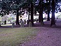 Bad Honnef Jüdischer Friedhof.jpg