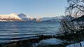 Balsfjorden coast 2.JPG