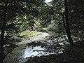 Banat, Nera Canyon - panoramio (37).jpg