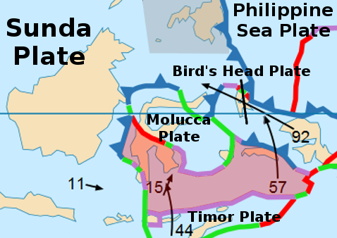 The Banda Sea Plate