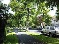 Bantock Avenue - geograph.org.uk - 807339.jpg