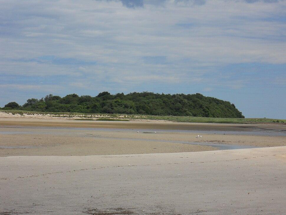Bar island 1