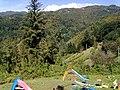 Barga, Province of Lucca, Italy - panoramio - jim walton (26).jpg