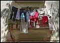 Barrio Vedado (36256543286).jpg