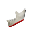 Base of mandible - close up - lateral view01.png