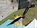 Bateleur Eagle 1 (1277572673).jpg