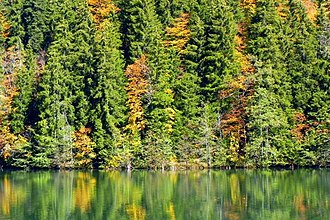 Bateti Lake - Image: Bateti lake in fall 3