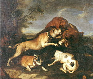 Bear-baiting - A painting of about 1650 by Abraham Hondius of a bear-baiting