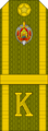 Belarus MIA—25 Cadet-Corporal rank insignia (Olive)—Removable.png