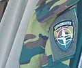 Belgian NATO insignia.JPG