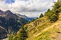 Bergtocht van Gimillan (1805m.) naar Colle Tsa Sètse in Cogne Valley (Italië). Zicht op het bergpad 02.jpg