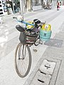 Bicycle and Gas.jpg