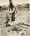 Big game shooting on the equator (1908 (1907)) (19748909303).jpg