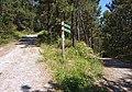 Bilbao - trails.jpg