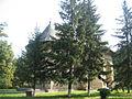 Biserica Sf. Dumitru din Harlau11.jpg