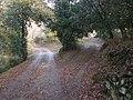 Bivio per Vallorsa - panoramio.jpg
