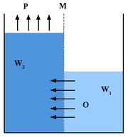 Sel energi osmosis air.