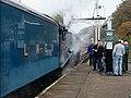 Bluebell Railway - Giants of Steam (22880594271).jpg