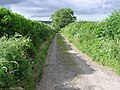 Boat Lane. - geograph.org.uk - 190163.jpg