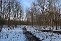 Bois de Boulogne neige 3.jpg