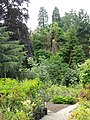 Bonhard House gardens - geograph.org.uk - 886114.jpg