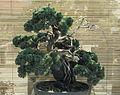 Bonsai-5 hg.jpg