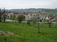 BonstettenZH02.jpg