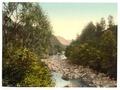 Borrowdale Birches, I., Lake District, England-LCCN2002696843.tif