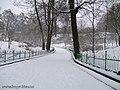 Botanic Garden in winter - panoramio - eugeneloza (5).jpg