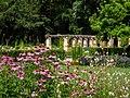 Botanical garden in Bamberg-20200728-RM-161606.jpg