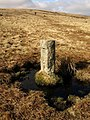 Boundary stone on Holne Moor - geograph.org.uk - 1181566.jpg