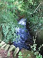 Bow Brook - geograph.org.uk - 520701.jpg
