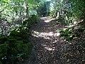 Bridleway approach to Hodgelane Brook - geograph.org.uk - 573225.jpg