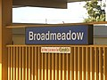 Broadmeadow The Home Station Of The Knights - panoramio.jpg