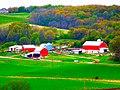Brunner Dairy Farm - panoramio.jpg