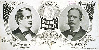Presidential Election of 1896 Democratic Poster - William Jennings Bryan (Pres) & Arthur Sewall  (VP)
