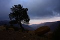 Bsaira District, Jordan - panoramio (15).jpg