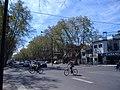 Bulevar Avellaneda Rosario 2.jpg